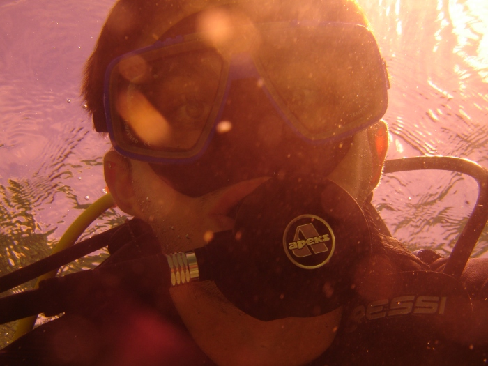 plongée moalboal philippines 5