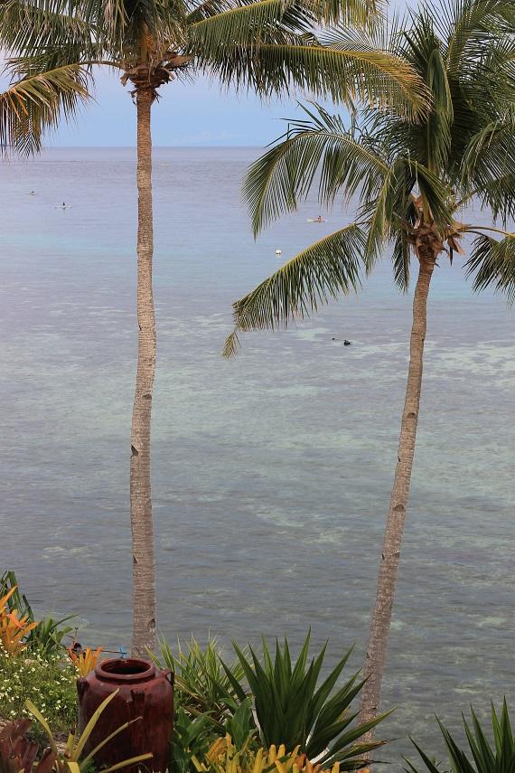 worldwildbrice.net bohol panglao alona beach 6