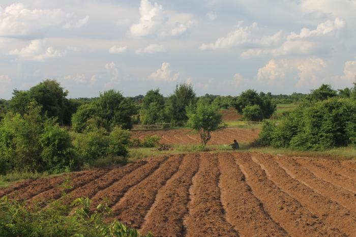 Kampong Cham Cambodge worldwildbrice.net mekong (11)