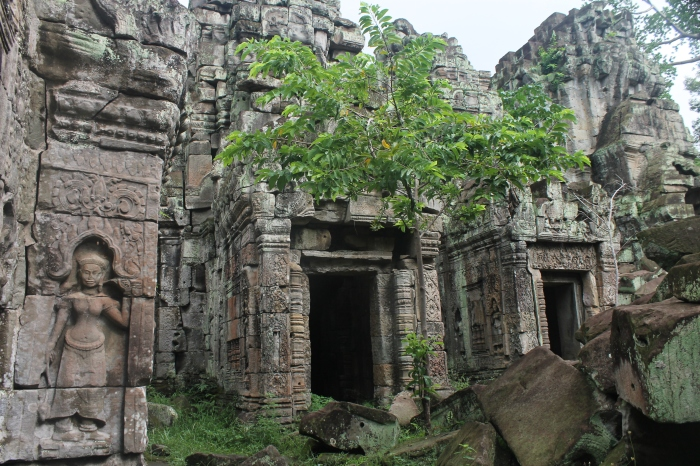 Preah Khan Angkor WorldWildBrice (13)