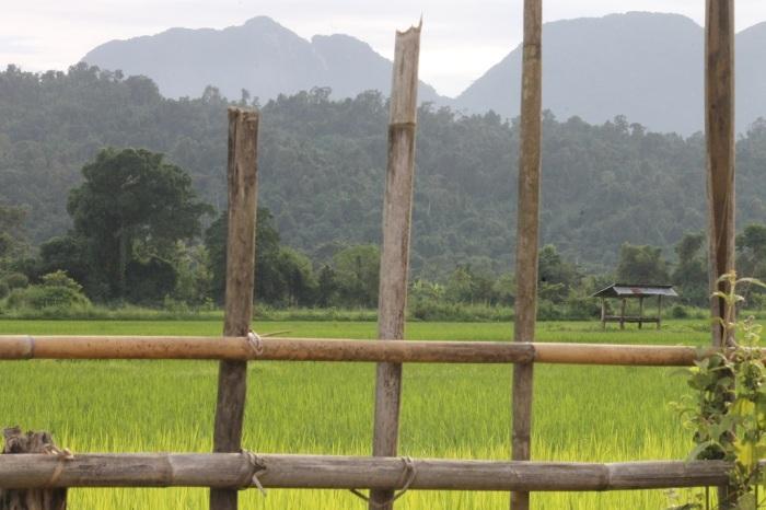 10 la petite maison dans la prairie à Vang Vieng
