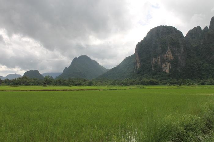 2 rizières à Vang Vieng