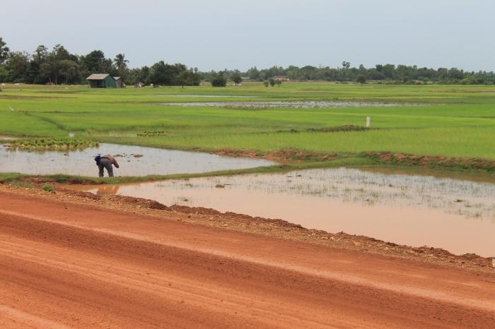 kampot worldwildbrice (1)