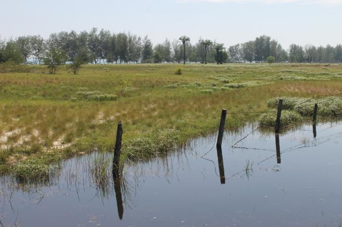 Sihanoukville (3)