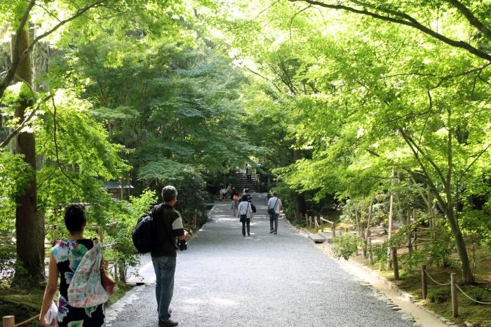 parc-ryoan-ji-kyoto