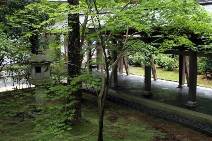 ryoan-ji-kyoto-feuilles