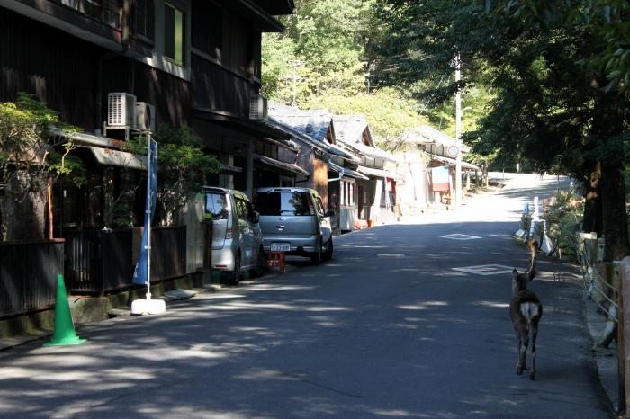Un chemin à côté d'un restaurant à Nara