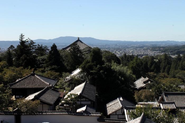 Vue panoramique de Nara