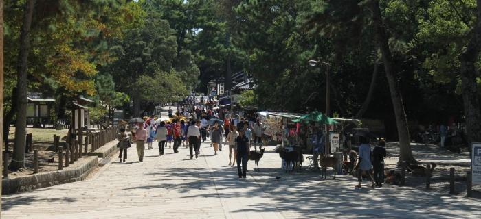touristes à Nara