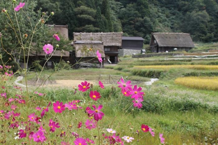 hameau-shirakawa-go