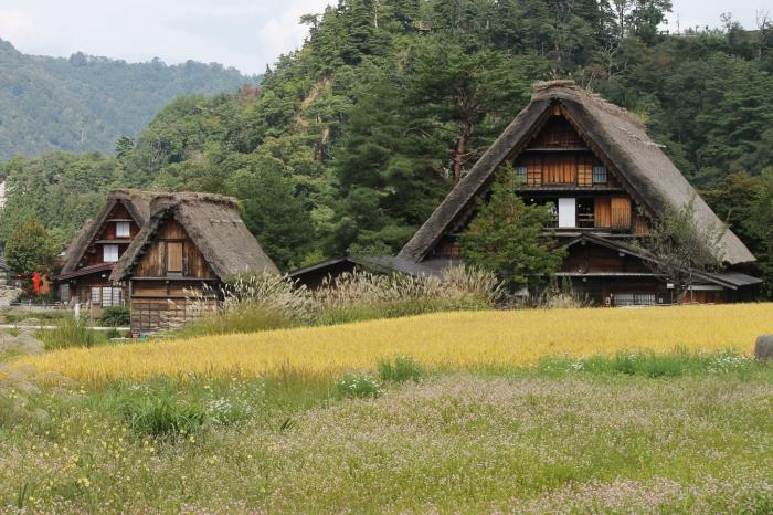 Les huttes de shirakawa-go lors de mon passage au mois d'octobre, vue à pieds depuis la route