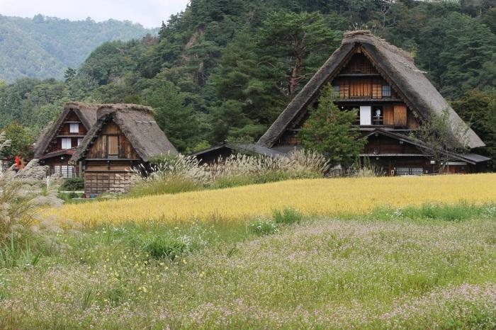 huttes-shirakawa-go