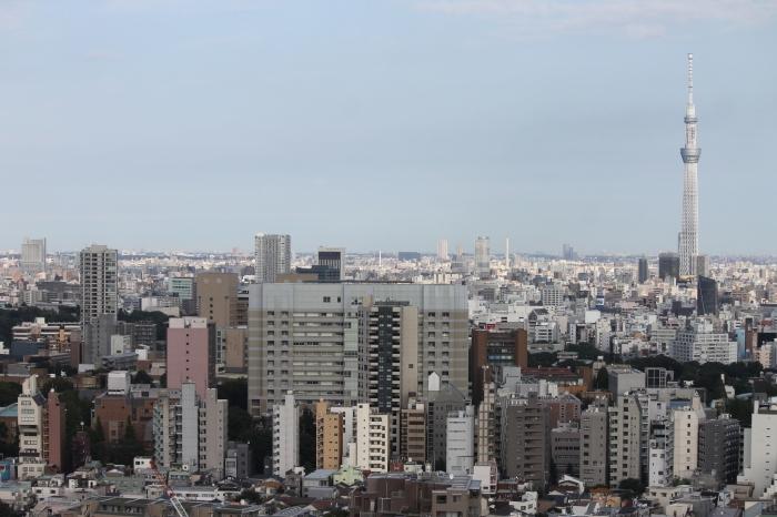 sur la skyline de tokyo depuis une plateforme d'observation du  Bunkyo Civic Center