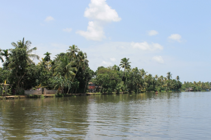 backwaters-Inde (2)