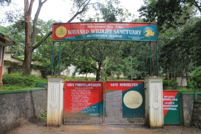 wayanad-wildlife-sanctuary (2)